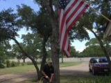 Deep Root Tree Fertilization Austin TX