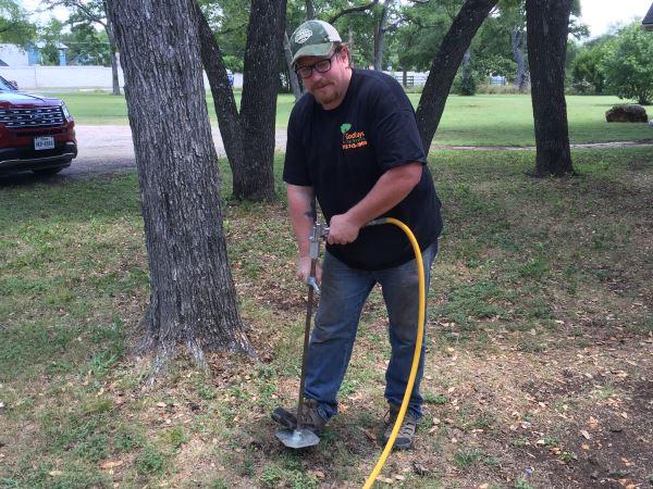 Tree Fertilization Austin TX