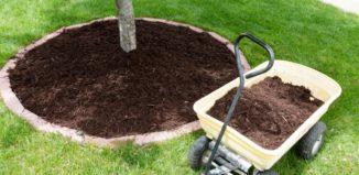 Austin Tree Mulching